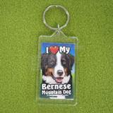 Plastic Keyring Bernese Mountain Dog