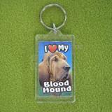 Plastic Keyring Blood Hound