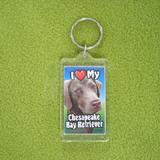 Plastic Keyring Chesapeake Retriever