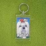 Plastic Keyring Maltese