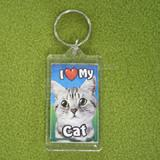 Plastic Keyring Cat Tabby Light