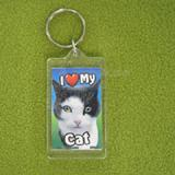 Plastic Keyring Cat Paint