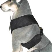 Comfort Control Dog Harness Black XXLarge