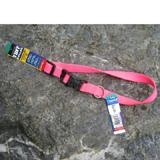 Nylon Dog Collar Adjustable 3/4-inch Neon Pink