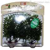 Family Pack Cabomba Plastic Aquarium Plant