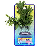 Water Hedge Small Plastic Aquarium Plant
