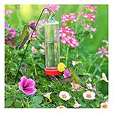 Perky Pet Hummingbird Feeder for planter