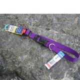 Nylon Dog Collar Adjustable 3/4-inch Purple