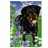 GR8 Dogs Rottweiler House Flag
