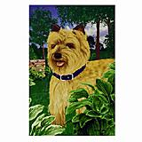GR8 Dogs Cairn Terrier House Flag