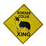 Sign Border Collie Xing 12 x 12 inch Aluminum