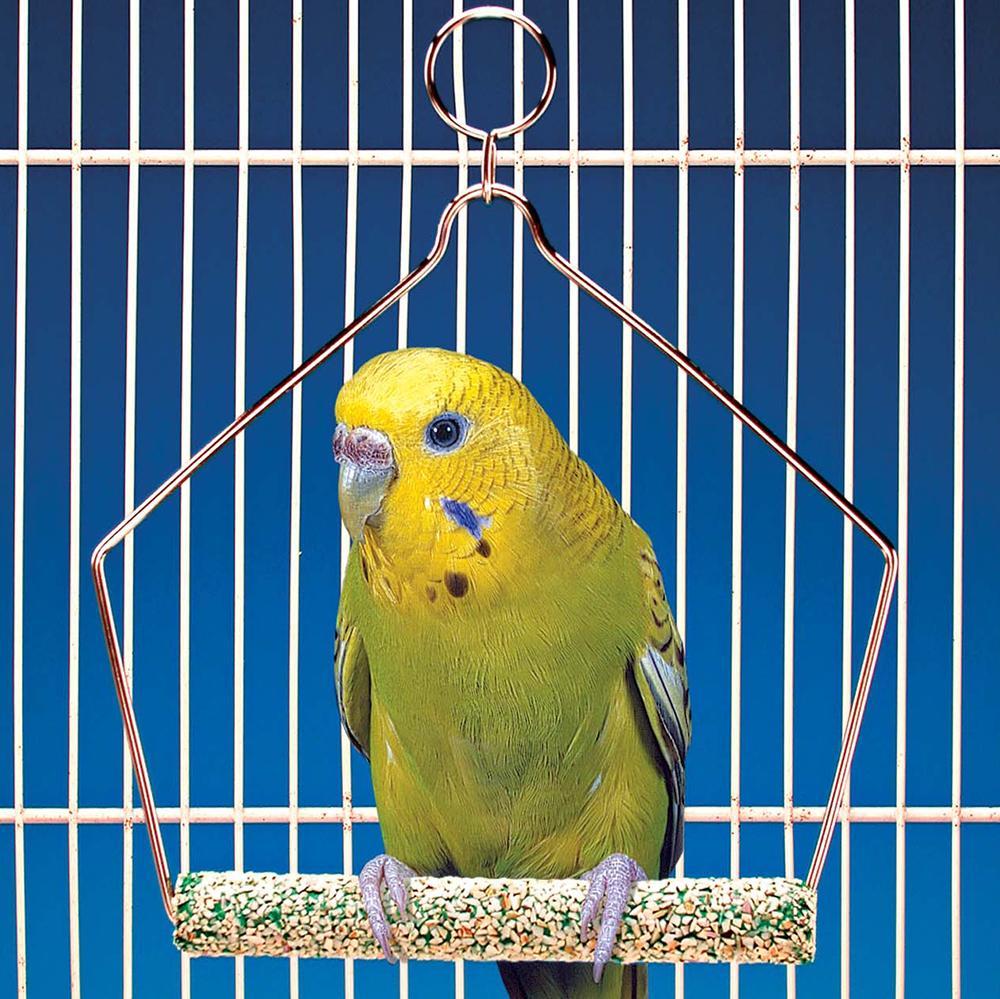 Penn Plax Swing Cement 4 inch Bird Toy
