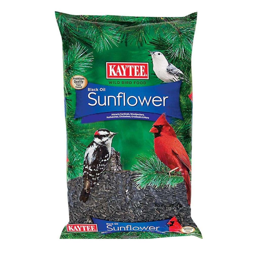 Kaytee Premium Black Oil Sunflower Seed 5 lb