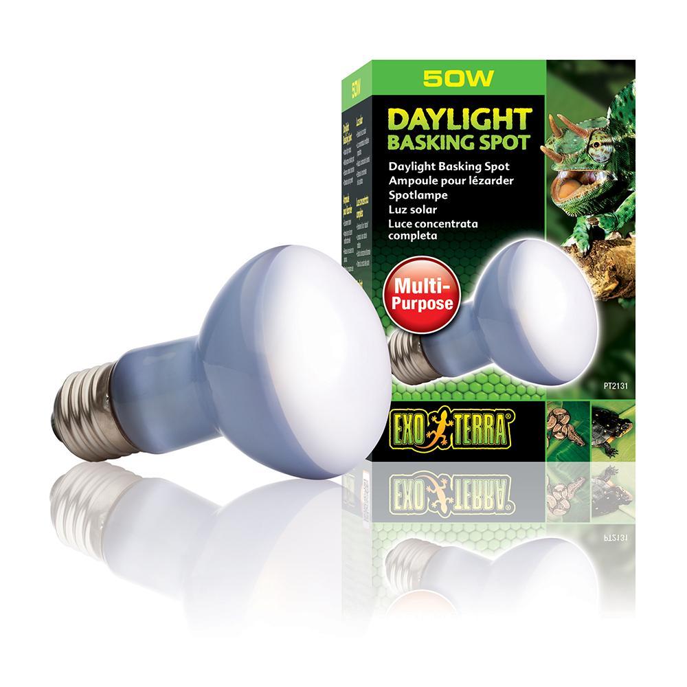 50 Watt Daylight Basking Terrarium Bulb from Exo Terra