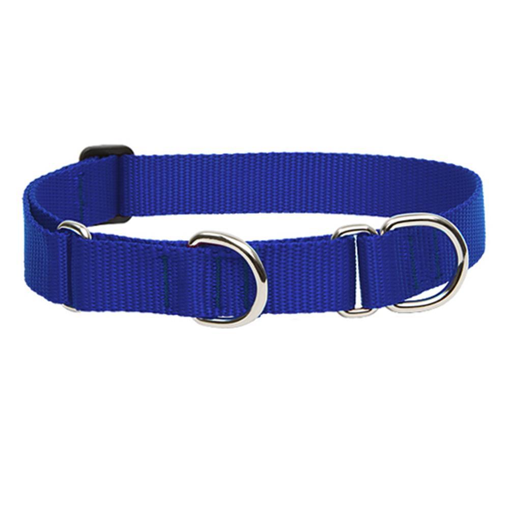 Lupine Martingale Dog Collar Blue 10-14-inch