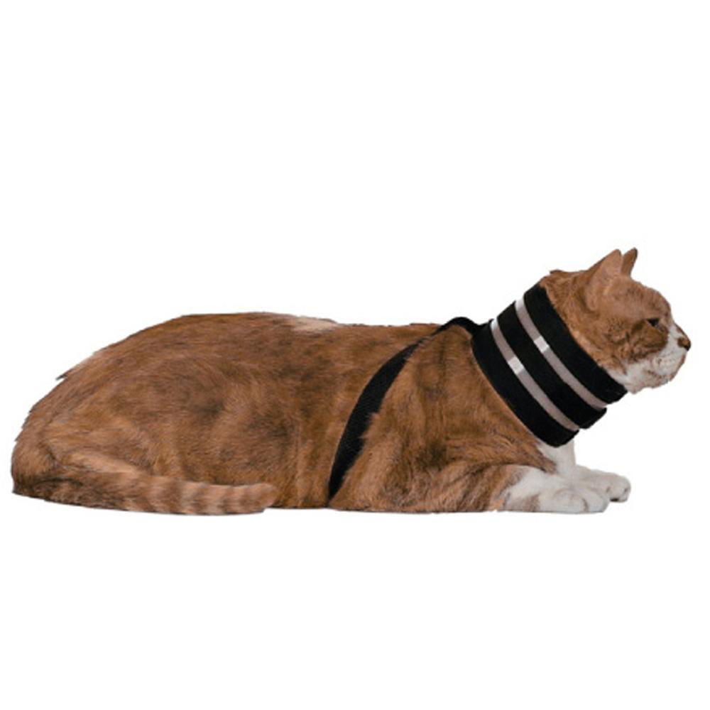 The Original BiteNot Cat Collar Large Cone Alternative