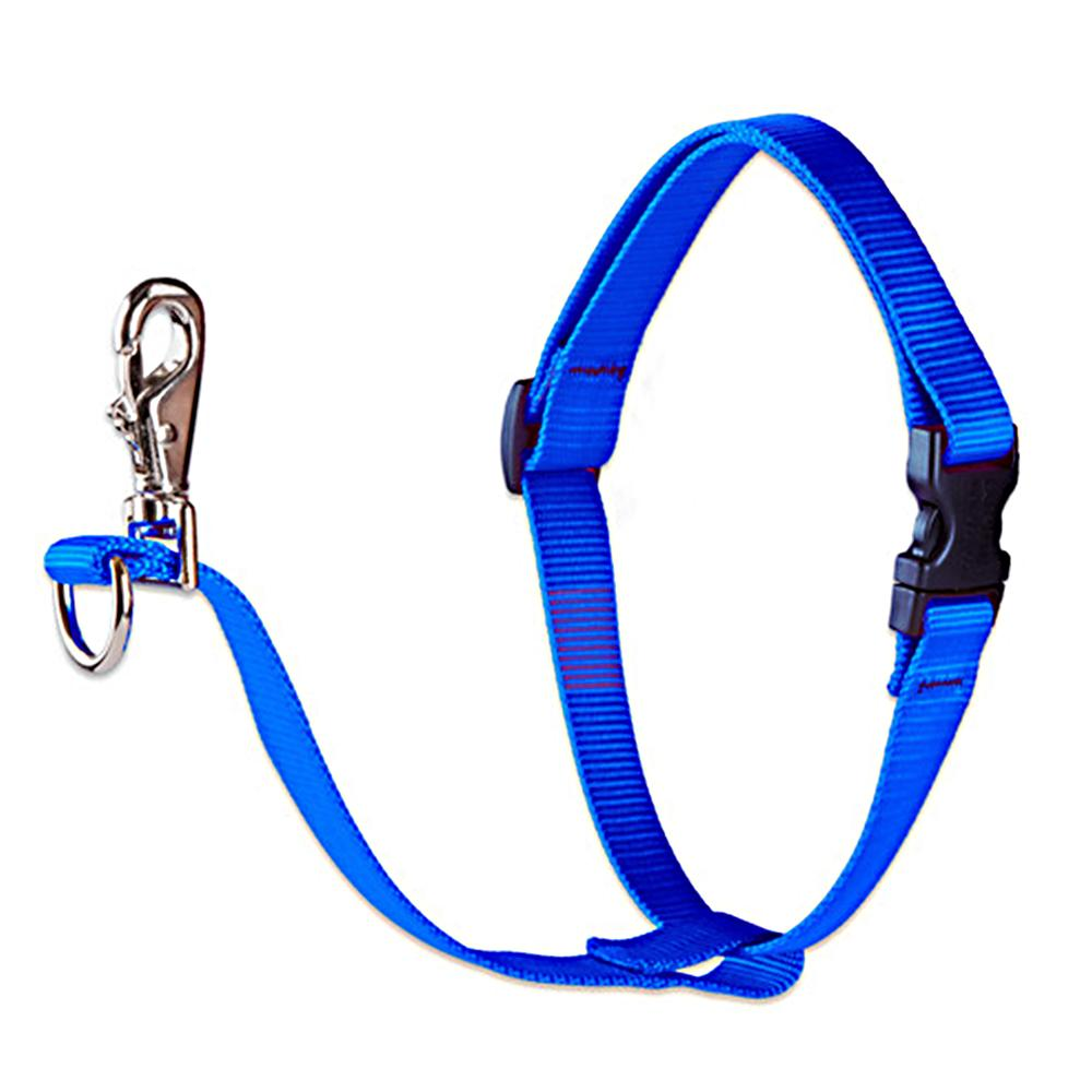Lupine No Pull Training Harness For Dogs Medium Blue