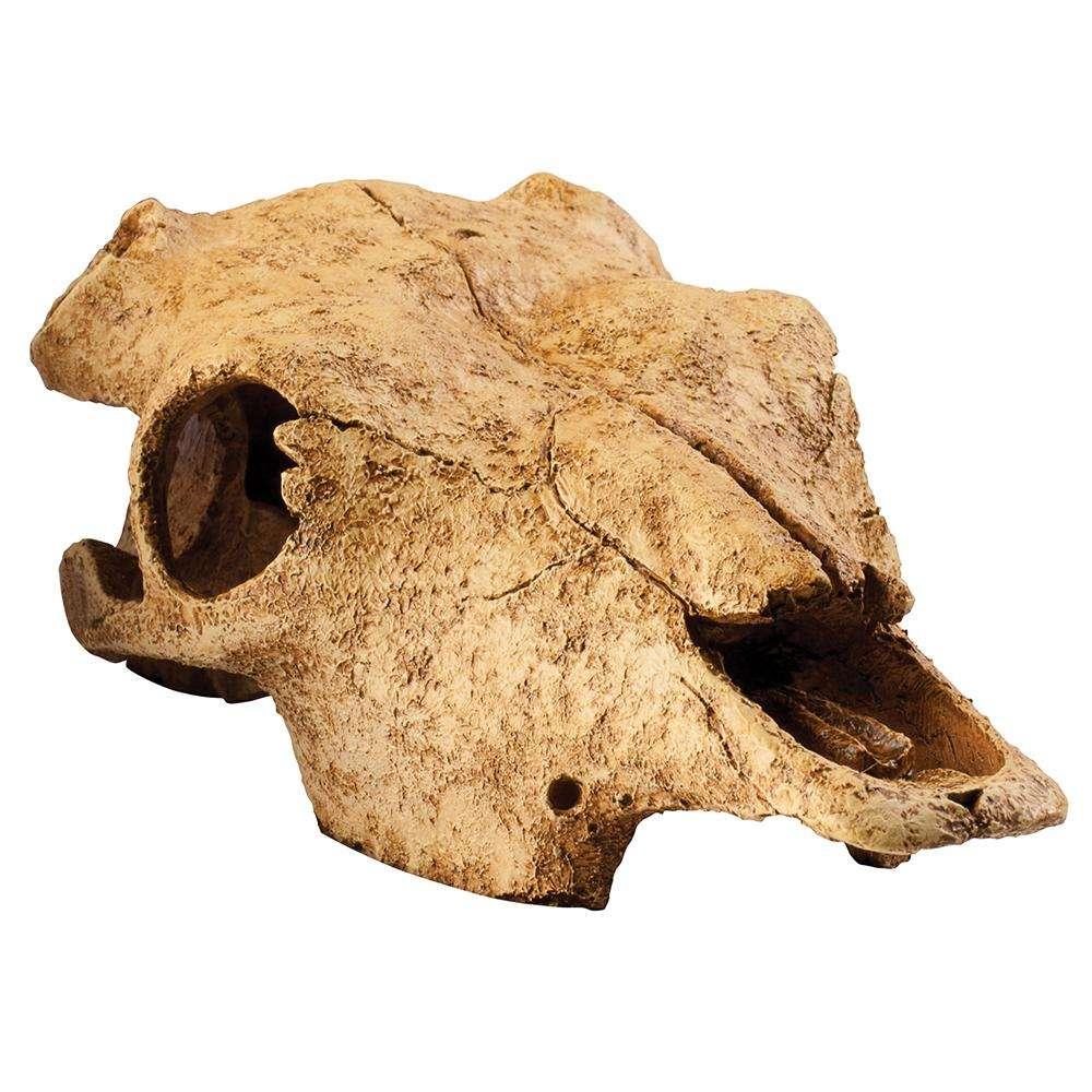 Exo Terra Buffalo Skull Terrarium Ornament