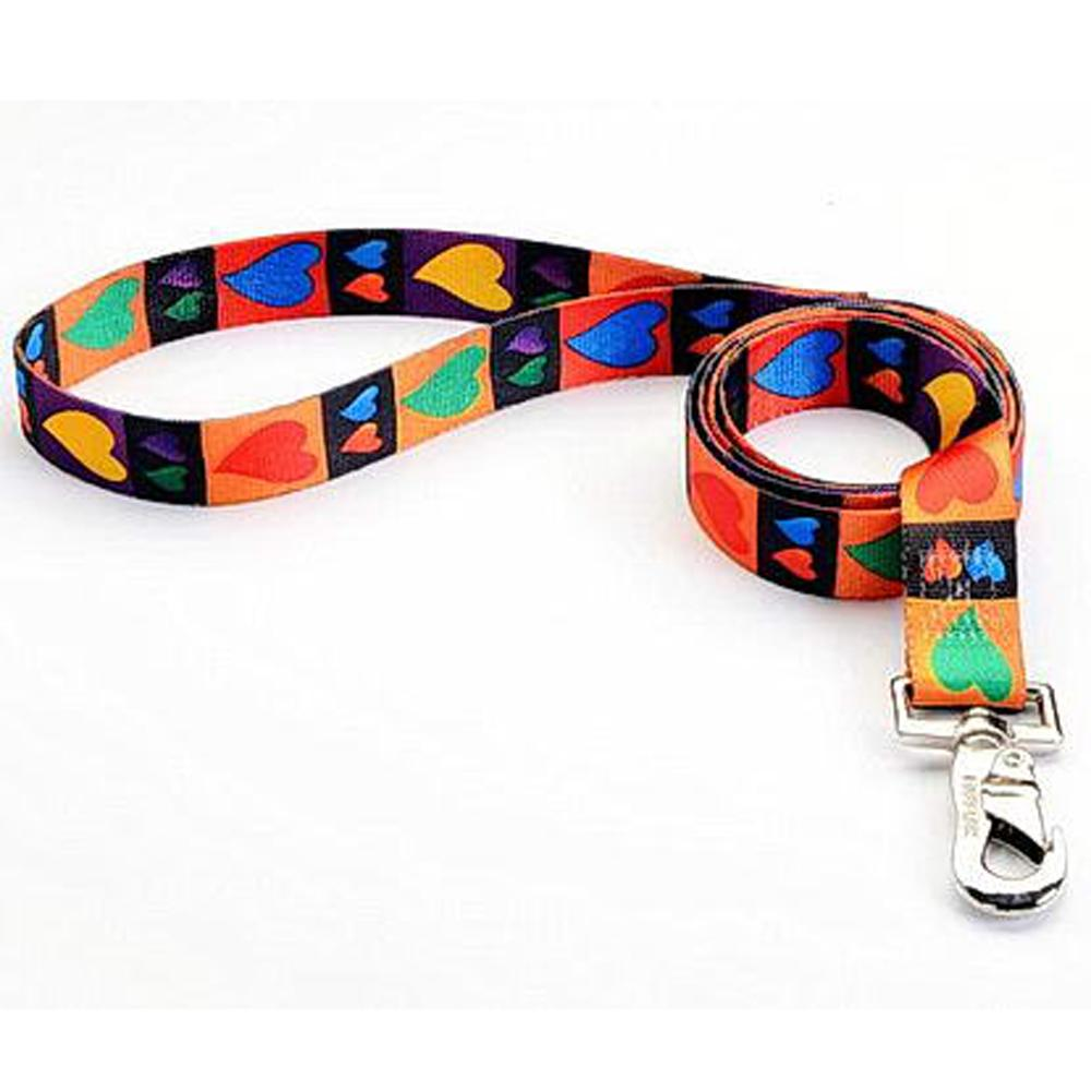 Tuff-Lock Large Hearts Nylon Leash 1in x 6-ft.