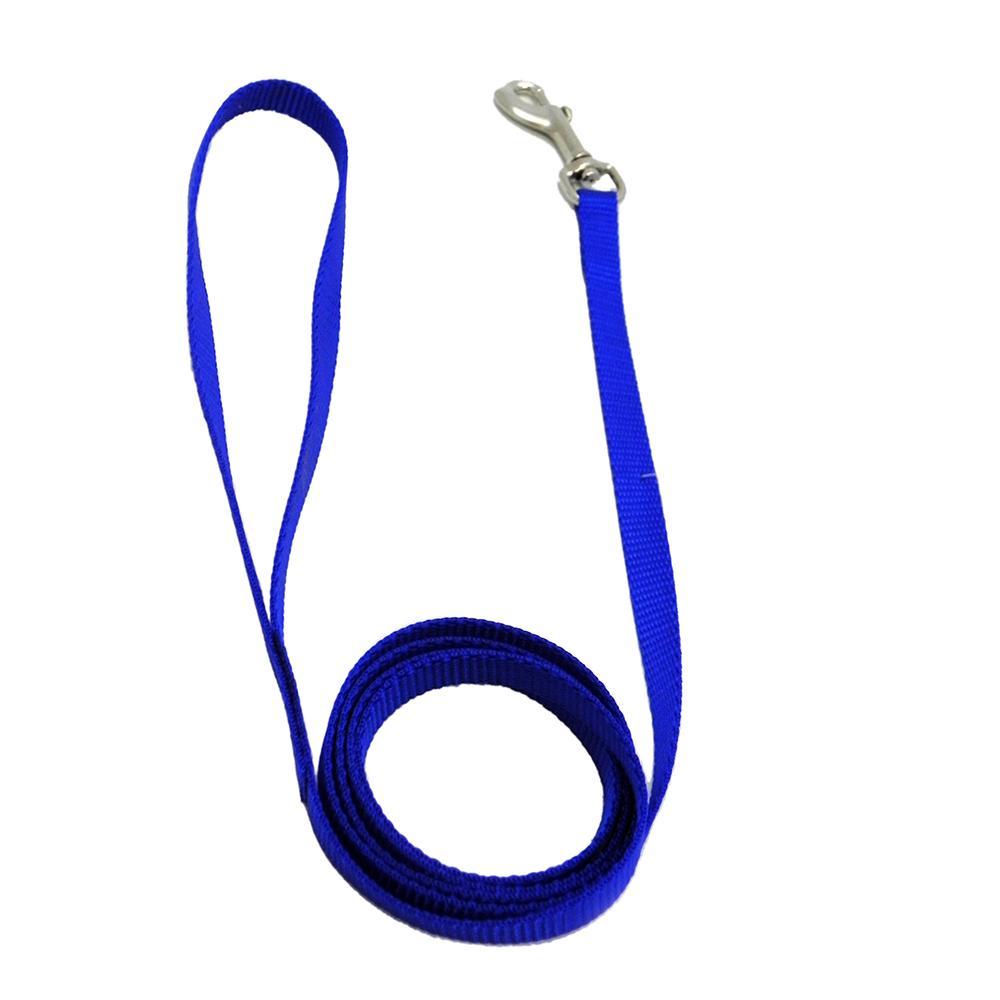 Nylon Dog Leash 3/8-inch x  4 foot Blue