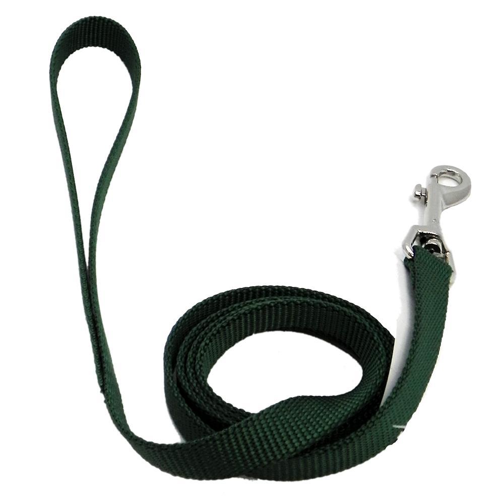 Nylon Dog Leash 5/8-inch x 4 foot Green