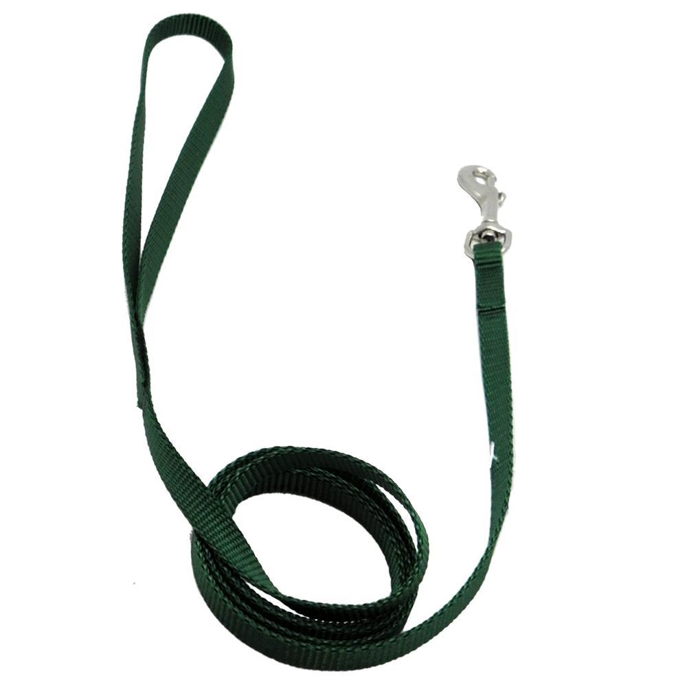 Nylon Dog Leash 3/8-inch x  4 foot Green