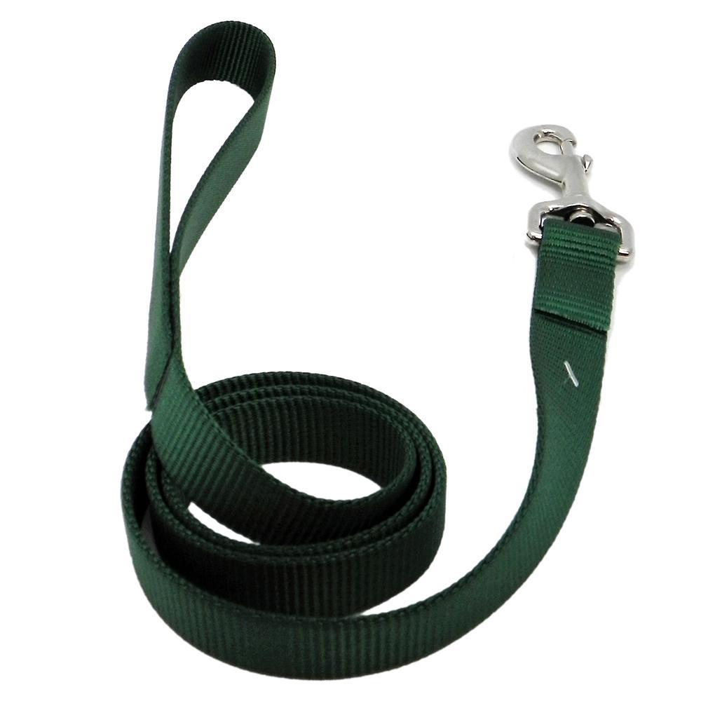 Nylon Dog Leash 1-inch x 4 foot Green