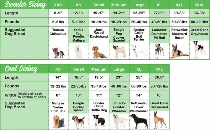 Chilly Dog Sweater and Coat sizing charts
