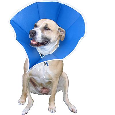 Trimline Soft Elizabethan Collar 6-1/2 inch Click for larger image