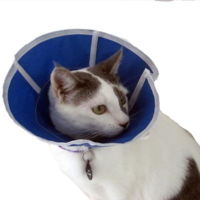 Trimline Soft Elizabethan Collar 4 inch Click for larger image