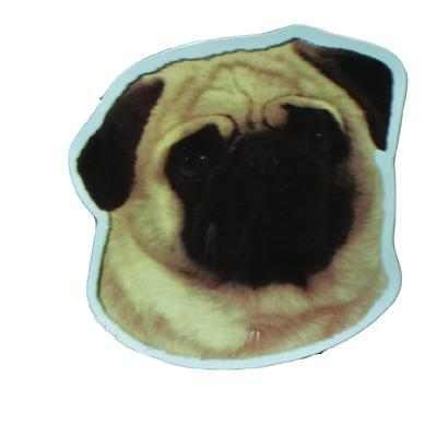 Vinyl Dog Magnet with Pug Small