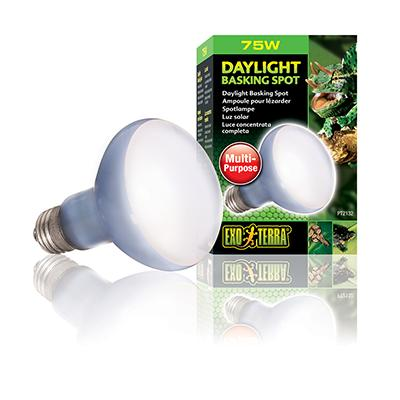 75 Watt Daylight Basking Terrarium Bulb from Exo Terra