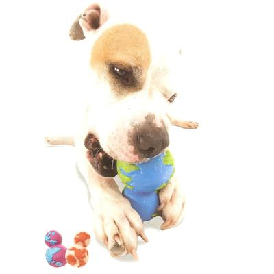 Planet Dog Orbee-Tuff Orbo Large Assorted Color
