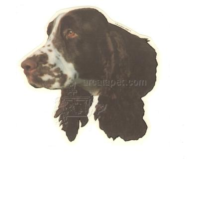 Double Sided Dog Decal English Springer Spaniel