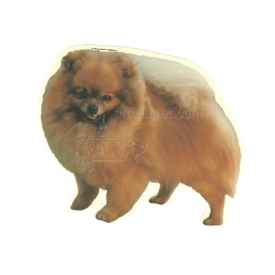 Double Sided Dog Decal Pomeranian