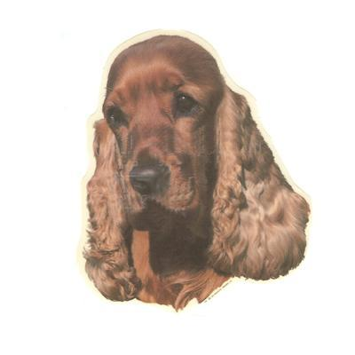 Double Sided Dog Decal Cocker Spaniel