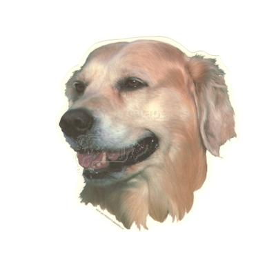 Double Sided Dog Decal Golden Retriever Click for larger image