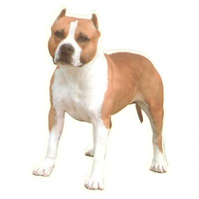 Double Sided Dog Decal American Staffordshire Terrier