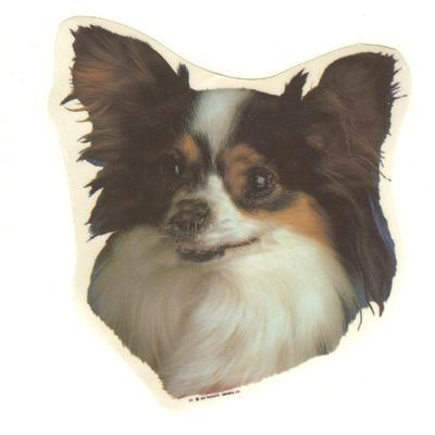 Double Sided Dog Decal Papillon Click for larger image