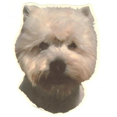 Double Sided Dog Decal West Highland White Terrier