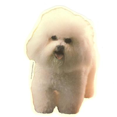 Double Sided Dog Decal Bichon Frise