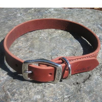 Circle T Latigo Single Layer Leather Dog Collar 24 inch Click for larger image