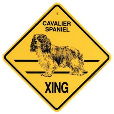 Xing Sign Cavailer Spaniel Plastic 10.5 x 10.5 inches