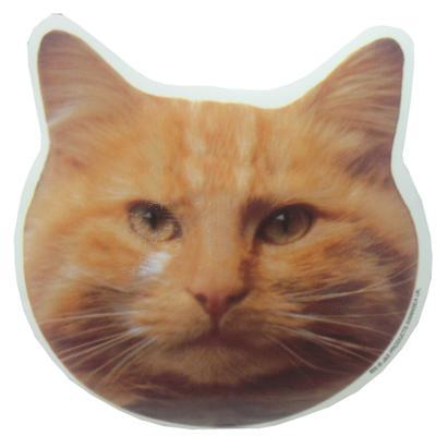 Double Sided Decal Cat Orange Head