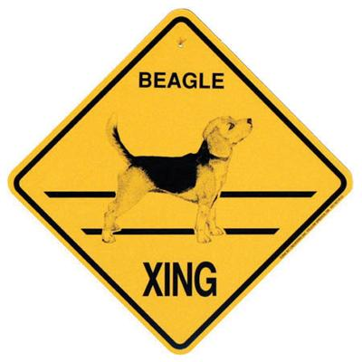 Xing Sign Beagle Plastic 10.5 x 10.5 inches