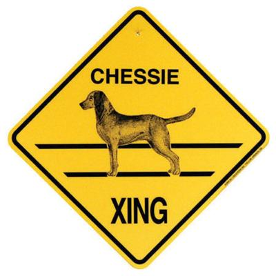 Xing Sign Chessie Plastic 10.5 x 10.5 inches