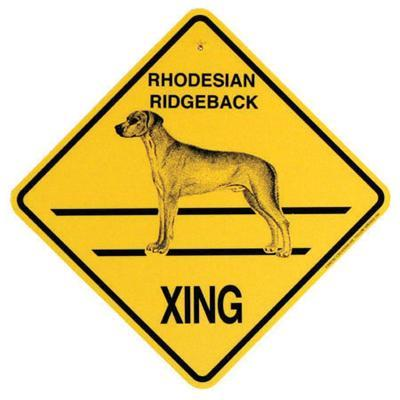Xing Sign Rhodesian Ridgeback Plastic 10.5 x 10.5 inches Click for larger image