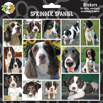 Arf Art Dog Sticker Pack Springer Spaniel