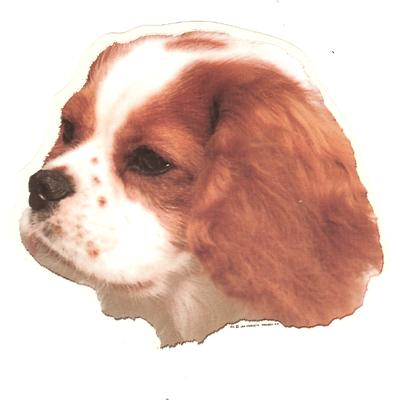 Double Sided Dog Decal Cavalier King Charles Spaniel