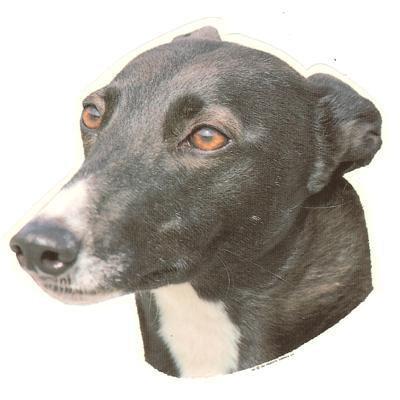 Double Sided Dog Decal Greyhound Grey Face Click for larger image